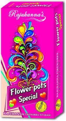 Fancy Pots - Flower Pots Special
